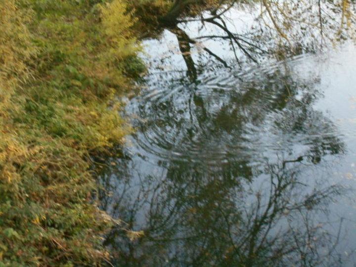la rivière L'AURE
