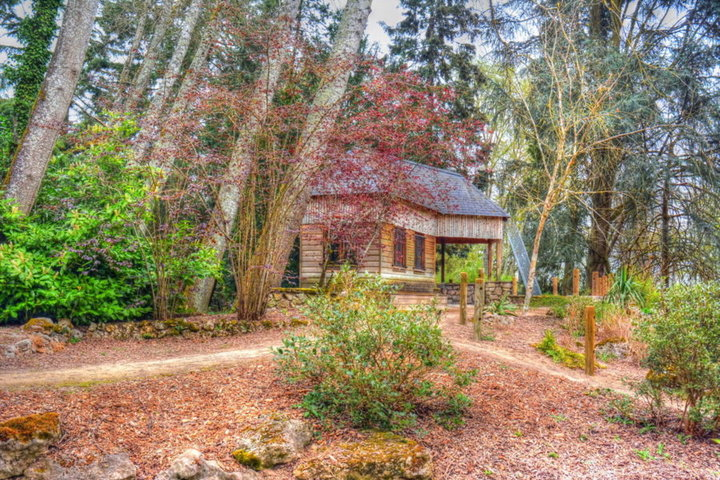 Visite des jardins des iles album photos voyages visites - Les couleurs de l automne ...