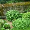 Un petit jardin 3