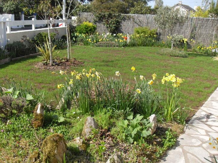 cr ation d 39 une pelouse rustique album photos mon jardin. Black Bedroom Furniture Sets. Home Design Ideas
