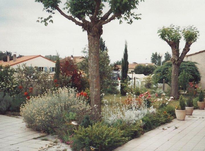 Un coin de provence            été 2010
