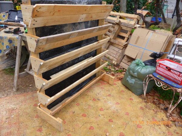sondage dans votre jardin vous avez des fraisiers. Black Bedroom Furniture Sets. Home Design Ideas