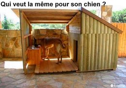 Vous avez dit : niche  pour chien ?