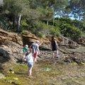 Activité-familles Les pieds dans l'eau (RAYOL-CANADEL-SUR-MER, 83)