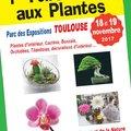 1ére Foire et Troc aux Plantes de TOULOUSE (TOULOUSE, 31)