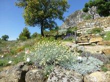 Le Jardin sec de l'abbaye de Valsaintes
