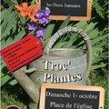 Le Troc'Plantes de St Jean les deux Jumeaux (SAINT JEAN LES DEUX JUMEAUX, 77)