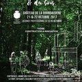 Festival de la Forêt et du Bois (MONTLOUIS-SUR-LOIRE, 37)