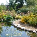 Les Jardins Aquatiques (SAINT DIDIER SUR CHALARONNE, 01)