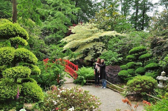 Parc botanique de haute bretagne le chatellier 35 - Carrefour des amateurs de beaux jardins ...