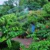 Jardin Des Paradis