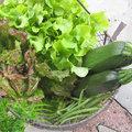 Août : fruits et légumes de saison