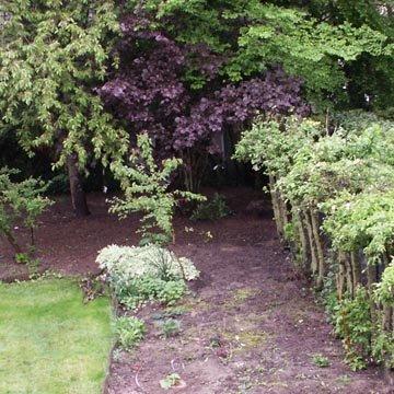 Legumes a planter en juillet legumes a planter en juillet calendar buttes sur butte juillet - Quel legumes planter en octobre novembre ...