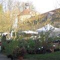 Printemps 2010 - Fête des Plantes Vivaces de Saint-Jean de Beauregard (91)