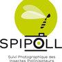SPIPOLL, être photographe d'insectes pollinisateurs