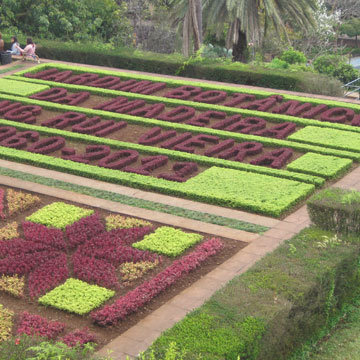 Madère : visite du jardin botanique