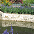 Restrictions d'eau au jardin : comment faire ?