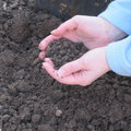 Analyser la terre du jardin