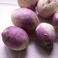 Quels légumes semer ou planter en mars au jardin ?
