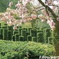 Prix du Jardin de l'Année 2012