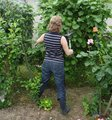 Grossesse et jardinage