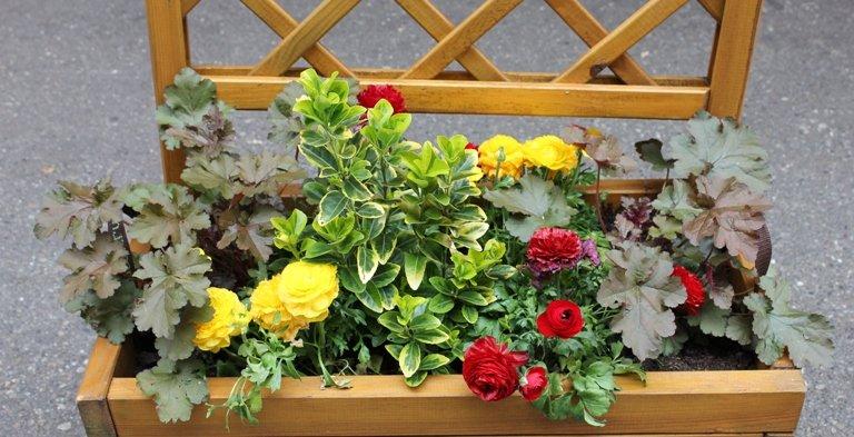 coin ombrag une jardini re de fleurs et de feuillages. Black Bedroom Furniture Sets. Home Design Ideas