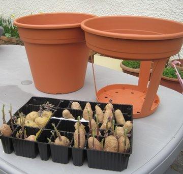 Planter des pomme de terre finest planter des pomme de terre with planter des pomme de terre a - Planter les pommes de terre ...
