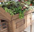 Végétaliser un toit de poulailler