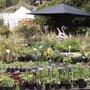 Journée des plantes de Courson (91) - Printemps 2009