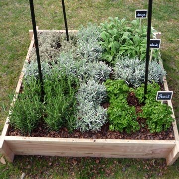 cultiver des l gumes sur son balcon ou sa terrasse. Black Bedroom Furniture Sets. Home Design Ideas
