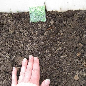 Recouvrir de terre
