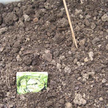 Astuce 2 de repérage des semences