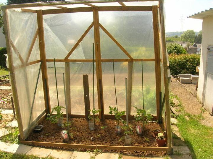 Abri tomates et poivrons