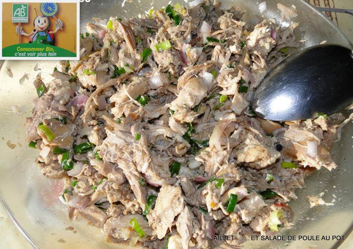 Aillet et poule au pot en salade