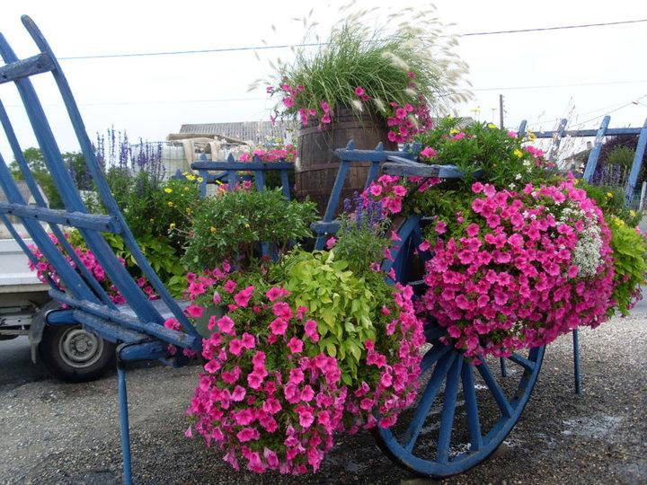charrette fleurie de Bretagne