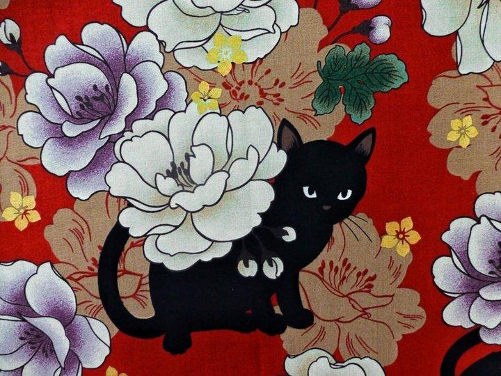 Chat noir et camélias