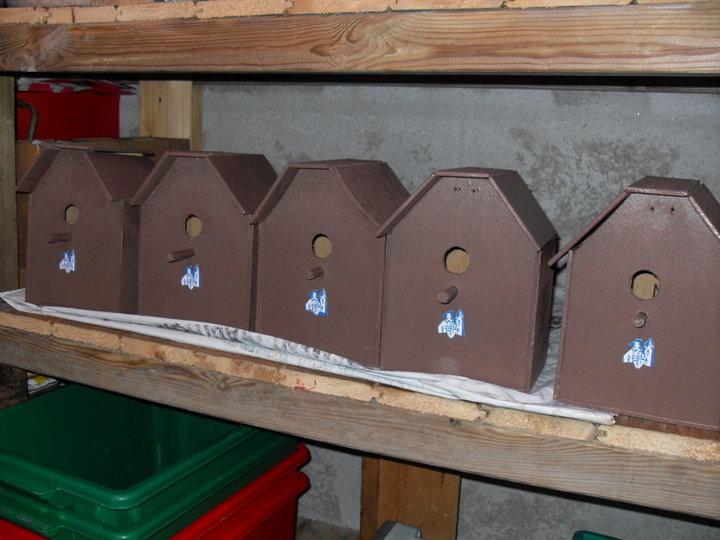 Cinq nichoirs pratiquement terminés