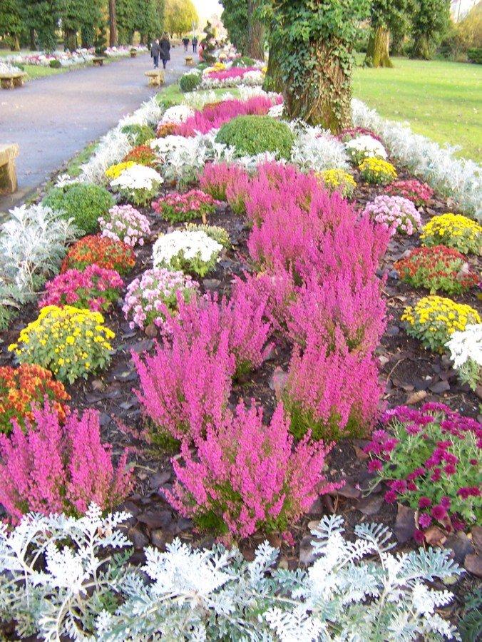 Composition florale .......