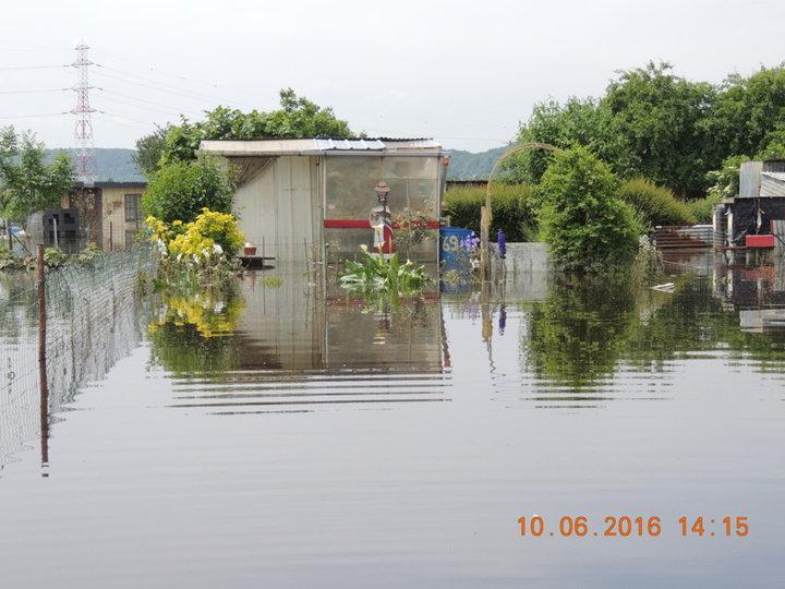 inondation du jardin ouvrier par la Seine tout perdu