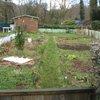 La naissance de mon jardin
