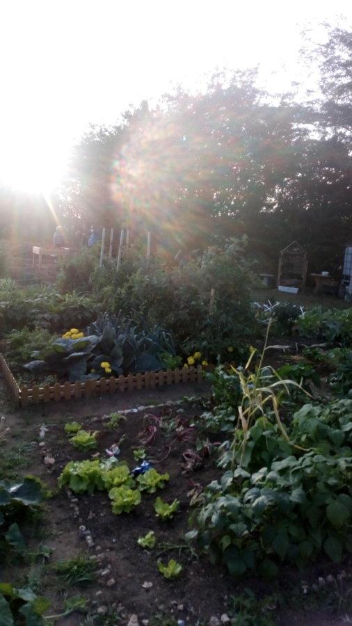 Jardin d adhérents