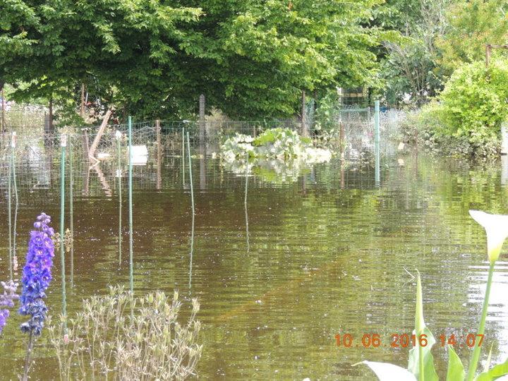 jardin dévasté par la SEINE il y presque un mois