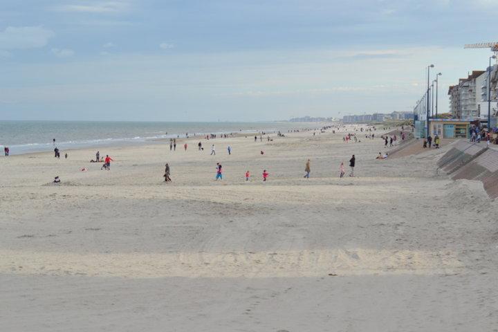 la plage avec d'un coté dunkerque et de l'autre la panne. Quand il fait beau (et oui ca arrive) on voit les cotes anglaises