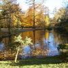 Le Parc de Mariemont  / Morlanwelz Mariemont  (Belgique)
