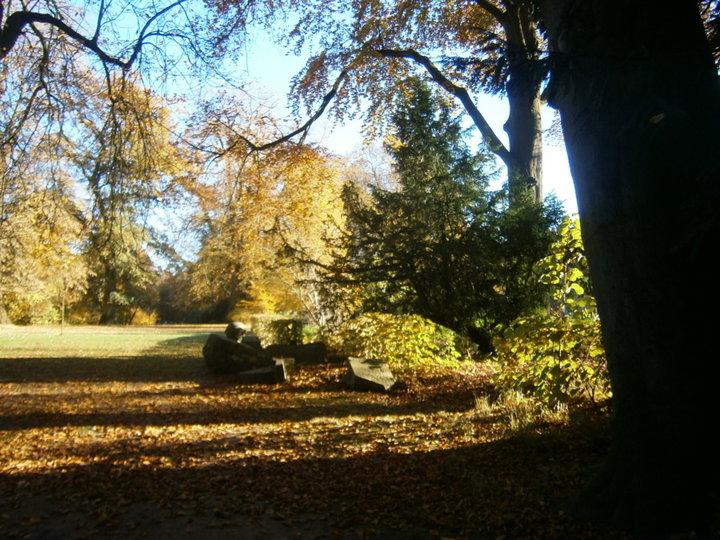 Parc de Mariemont (Belgique)