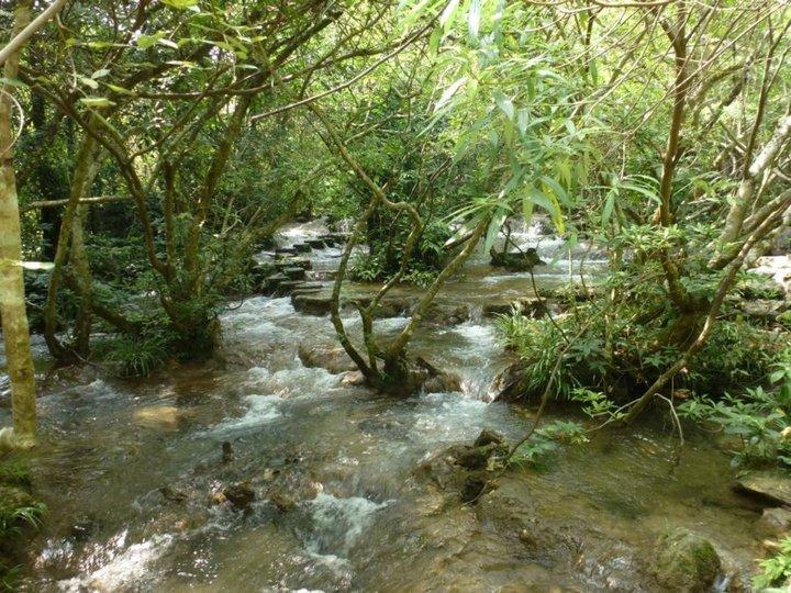 Parc de xiaoqikong