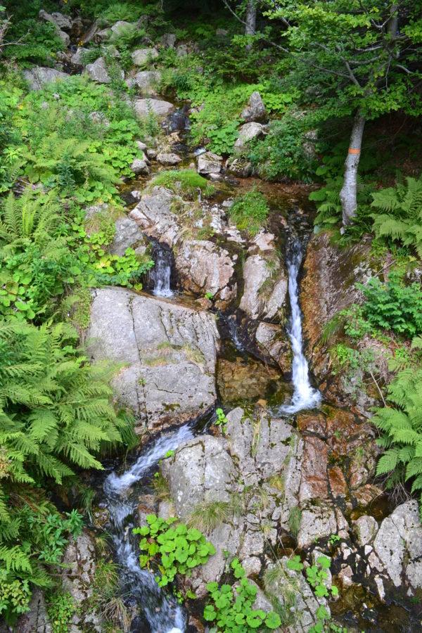 Petite cascade au col de meyrand à 1370 m