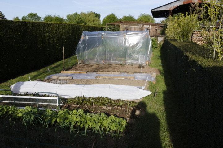 Photo du jardin 2015