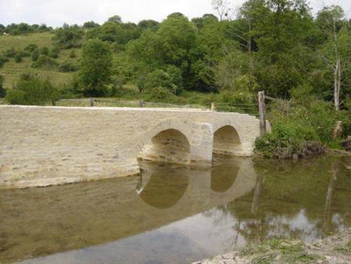 Pont des gonons