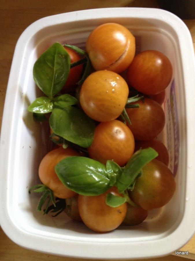 Tomates cerise et basilic